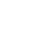 Mayer Store